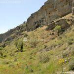 Foto Risco de las Cuevas 38