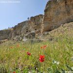 Foto Risco de las Cuevas 64