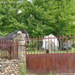 Foto Caballos en Prádena del Rincón 9