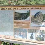 Foto Área de Descanso M-604 1