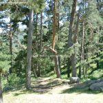 Foto Área de Descanso M-604 3