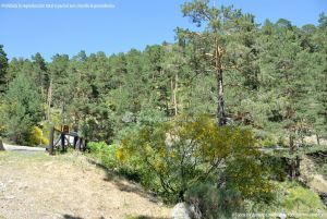 Foto Área de Descanso M-604 4