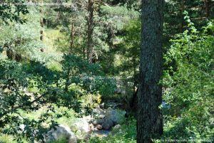 Foto Área de Descanso M-604 7