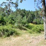 Foto Área de Descanso M-604 9