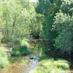 Foto Río Lozoya en El Paular 4