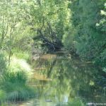 Foto Río Lozoya en El Paular 5