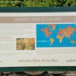 Foto Arboreto Giner de los Ríos 5