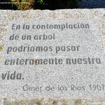 Foto Arboreto Giner de los Ríos 6