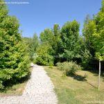 Foto Arboreto Giner de los Ríos 12