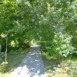Foto Arboreto Giner de los Ríos 13