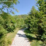 Foto Arboreto Giner de los Ríos 15