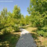 Foto Arboreto Giner de los Ríos 20