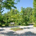 Foto Arboreto Giner de los Ríos 38