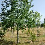 Foto Parque Infantil en Oteruelo del Valle 10