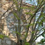 Foto Iglesia de San Juan Bautista de Rozas de Puerto Real 3