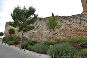 Foto Castillo de Torremocha 43