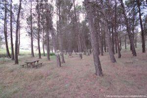 Foto Área Recreativa y Parque Forestal Dehesa de Santorcaz 4