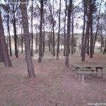 Foto Área Recreativa y Parque Forestal Dehesa de Santorcaz 5