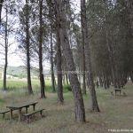 Foto Área Recreativa y Parque Forestal Dehesa de Santorcaz 8