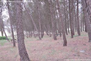 Foto Área Recreativa y Parque Forestal Dehesa de Santorcaz 9