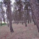 Foto Área Recreativa y Parque Forestal Dehesa de Santorcaz 10
