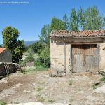 Foto Gallo en La Serna del Monte 4