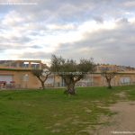 Foto Parque del Olivar 6