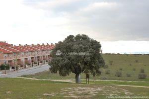 Foto Parque del Encinar 3