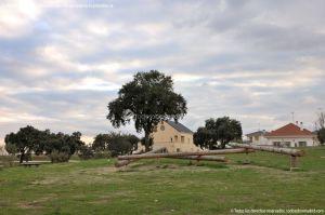 Foto Parque del Encinar 6