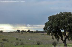 Foto Parque del Encinar 13