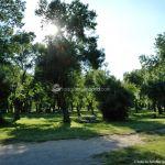 Foto Parque Municipal de Soto del Real 11