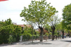 Foto Paseo de la Estación de Tielmes 2