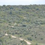 Foto Cuevas en Tielmes 5