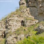 Foto Cuevas en Tielmes 11
