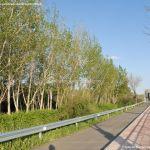 Foto Puente de Hierro de Titulcia 6