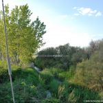 Foto Puente de Hierro de Titulcia 33