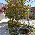 Foto Parque Casa de Cultura de Torrejón de la Calzada 6