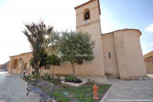 Foto Iglesia de San Pedro Apóstol de Torremocha de Jarama 62