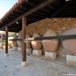 Foto Museo del Vino en Torremocha de Jarama 2