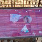 Foto Museo del Vino en Torremocha de Jarama 8