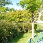 Foto Parque en Valdaracete 7