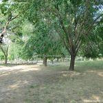 Foto Parque Fuente Vieja 1