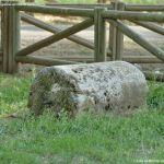 Foto Parque Fuente Vieja 9