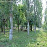 Foto Parque Fuente Vieja 14