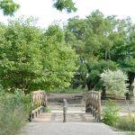 Foto Parque Fuente Vieja 18
