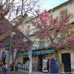 Foto Plaza Valle de la Laguna 2
