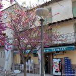 Foto Plaza Valle de la Laguna 6