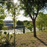 Foto Instalaciones deportivas en Velilla de San Antonio 1