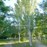 Foto Parque de Irene Fernández Pereira 8