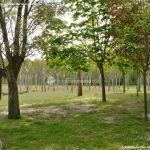Foto Área Recreativa La Poveda en Villa del Prado 7